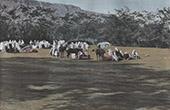 Nomaden - Cavalli - Costume Tradizionale (Algeria)