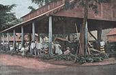 Franska Polynesien - Tahiti - Marknad i Papeete