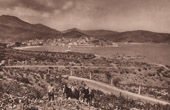 View of Banyuls - Vineyard - Pyr�n�es-Orientales - Languedoc-Roussillon (France)