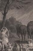 Bible - Old Testament - Ten plagues of Egypt - Plague of bush-crickets
