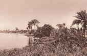 Lagoon (C�te d'Ivoire - West Africa)