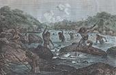 Fishing near Cayenne (French Guiana)