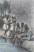 Negros at Touggourt - Ouargla Province - Sahara - Oasis (Algeria)