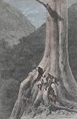 San Blas Kordillere - Bergsteigen - Erstbesteigung (Panama)