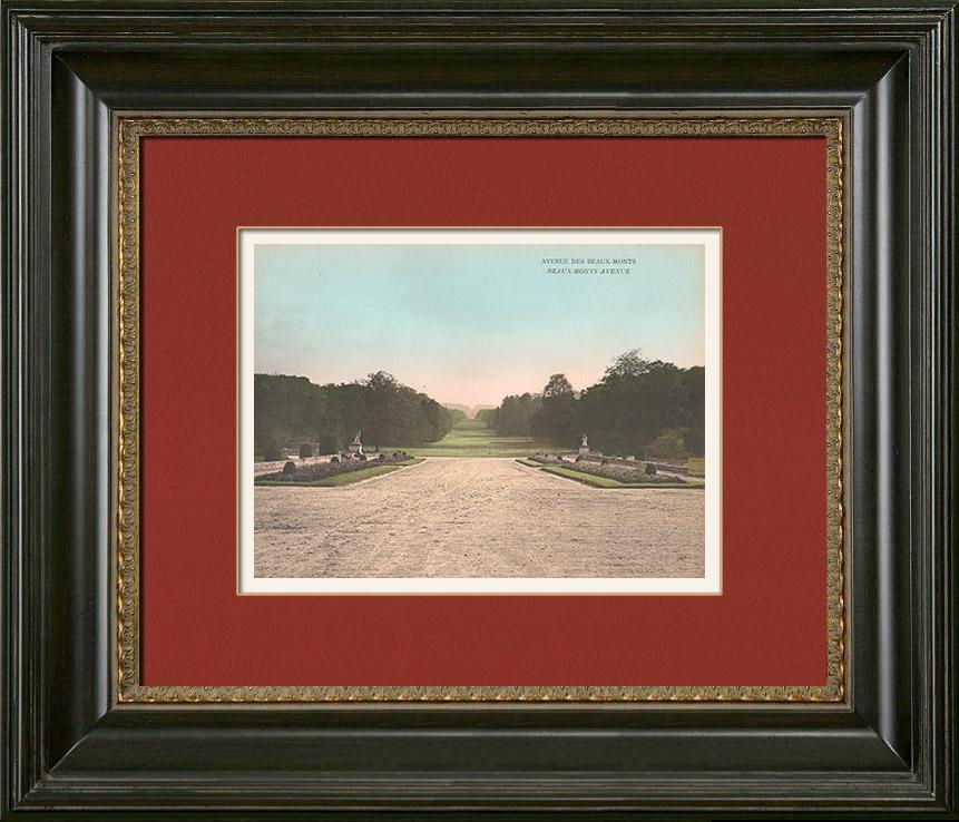 Antique Prints & Drawings   Castle of Compiègne - Park - Avenue des Beaux-Monts   Photochrom print   1890