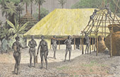 Construction of a Shack by the Women of Coffin - Rio Nunez (Guinea)