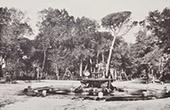 Villa Borghese (Roma) - Fonte - Sorgente - Fontana dei cavalli marini