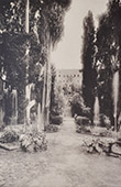 Villa d'Este (Tivoli - Latium) - Rond-point des Cypr�s