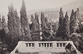 Villa d'Este (Tivoli - Latium) - Terrasse - Cypr�s