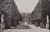 Jardin de Boboli - Giardino di Boboli (Florence - Toscane) - All�e