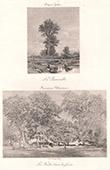 Peinture fran�aise - Barbizon - La Passerelle (Jules Dupr�) - La Hutte dans la For�t (Th�odore Rousseau)