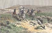 Hunting in the Plains at Alfa near Sidi Aïch (Tunisia)