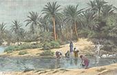 G�rten in Gafsa - Oued Ba�ech (Tunesien)