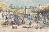 Uppt�cktsresa Victor Giraud i Uemba - Ketimburu (Tanzania)