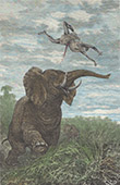Expedition of Victor Giraud in Equatorial Africa - Attack of an Elephant