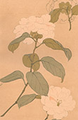 Japanese art - Decoration - Flowers - Camellia - 18th Century