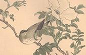 Japanische Kunst - Dekoration - Vögel und Blumen (Shijo Schule)