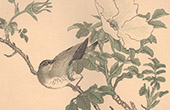 Japanische Kunst - Dekoration - V�gel und Blumen (Shijo Schule)