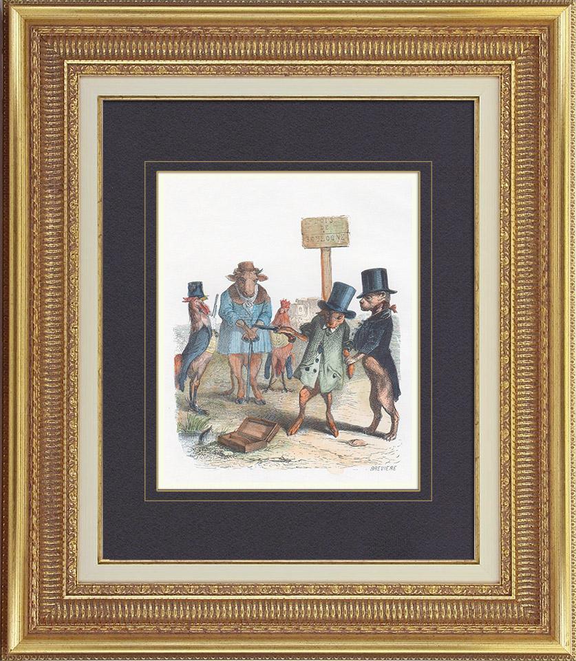 Gravures Anciennes & Dessins   Vie Privée et Publique des Animaux - Contes Satiriques - Caricature - Duel - Bois de Boulogne - Lapin - Coq - Taureau - Chien   Gravure sur bois   1842