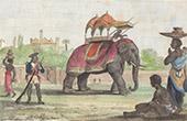 Elephant - Hinduism - Traditional Costume - Sepoys (India)