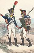 Napoleonic Soldier - Uniform - Imperial Guard - Voltigeur - Flanqueur Grenadier