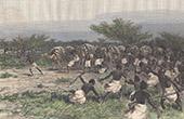 Caravan - Ambush at Lafole (Somalia)