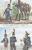 Exército Francês - Traje Militar - Guarda Imperial - Exército Prussiano - Infantaria
