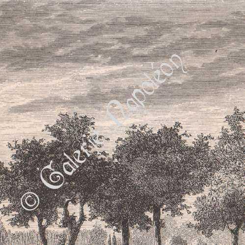 Stampe antiche stampa di giardini alla francese ricami for Stampe di campagna francese