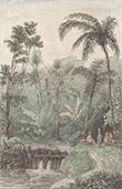 C�l�bes - Sulawesi - Sources Chaudes de Passo (Indon�sie)