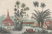 Moluckerna - Graver i Ambon (Insulind)