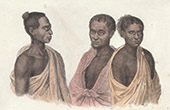 Pacific Islands - Hawaii - Portrait of three Natives