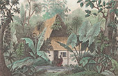 Caroline Islands - Ualan Island - Dwelling (Oceania)
