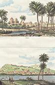 View of Palmeral of Elche - Alicante - View of Murviedro - Sagunto - Valence (Spain)