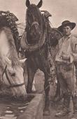 Cavalli all'abbeverata (Pascal Dagnan-Bouveret)