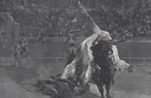 Corrida - Bullfighting (Aim� Morot)