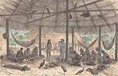 Aboriginal Peoples - Wayana People (Guiana Shield)