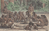 Aboriginal Peoples - Meal (Guiana Shield)