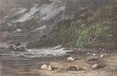 R�o Ucayali - Fluss - Sturm (Peru)