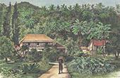 Tubuai - Austral�arna - Franska Polynesien (Frankrike)