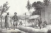 French Camp near Algiers (Algeria)