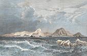 Terre Louis-Philippe - Antarktische Halbinsel - Dumont d'Urville