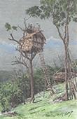 Wohnung - Stämme von Koyari - Port-Moresby (Papua-Neuguinea)