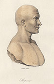 Portrait of Scipio Africanus - Publius Cornelius Scipio Africanus (3rd century BC - 2nd century BC)