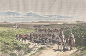 View of Kairouan - Departure of a Convoy (Tunisia)