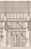 Architect's Drawing - Slaughterhouse - Besançon - Doubs (Delacroix et Bérard)