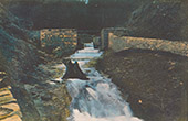 Alagnon River at Lioran - Mounts of Cantal - Cantal (France)