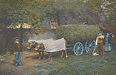 Pyrenees - Attelage B�arnais - Oxen - Chariot (France)