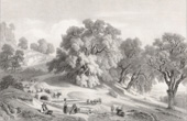 Watering place near Cervara  - Roman States (Edouard Hostein)