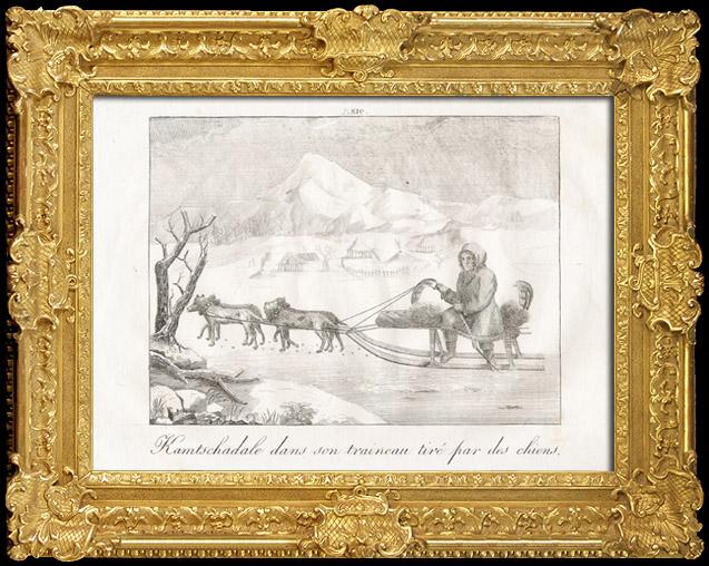 Gravures Anciennes & Dessins   Kamtschadale dans son Traineau tiré par des Chiens (Itelmènes - Kamtchatka - Russie)   Gravure sur cuivre   1825