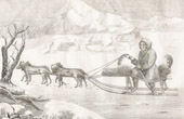 Kamchadal in its Sledge drawn by Dogs (Itelmen - Kamchatka - Russia)